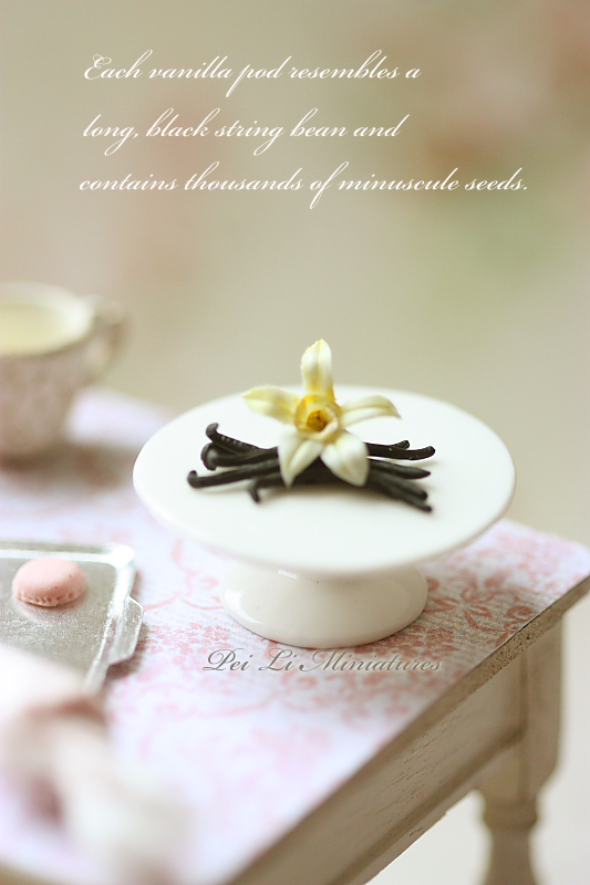 Miniature Clay Food - Vanilla Flower and Bean Pods