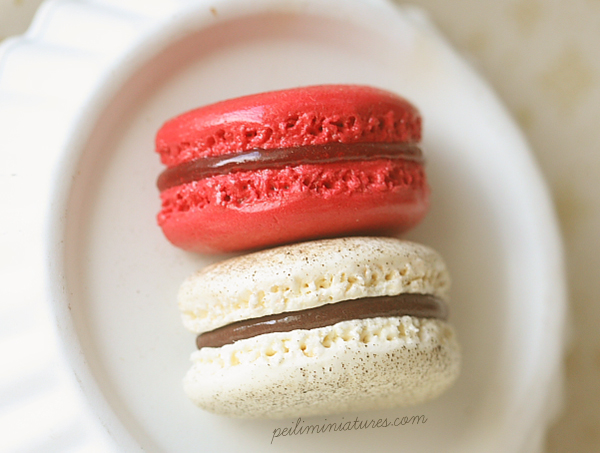 Raspberry and Vanilla Hazelnut Macaron