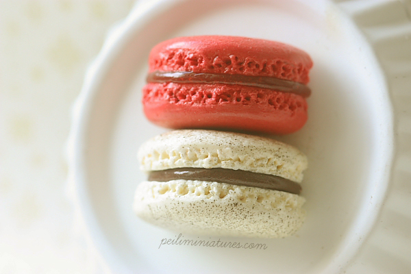 Raspberry and Vanilla Hazelnut Macaron-macaron magnets, fridge magnets